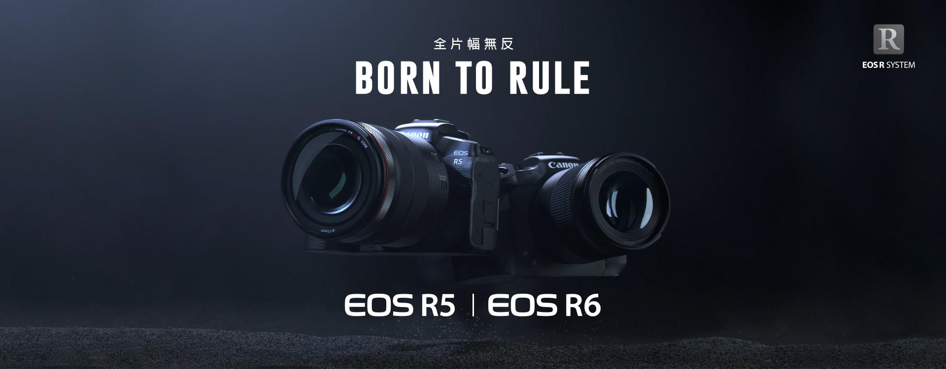 BornToRule_CorpSite_1920x750px_tc.jpg
